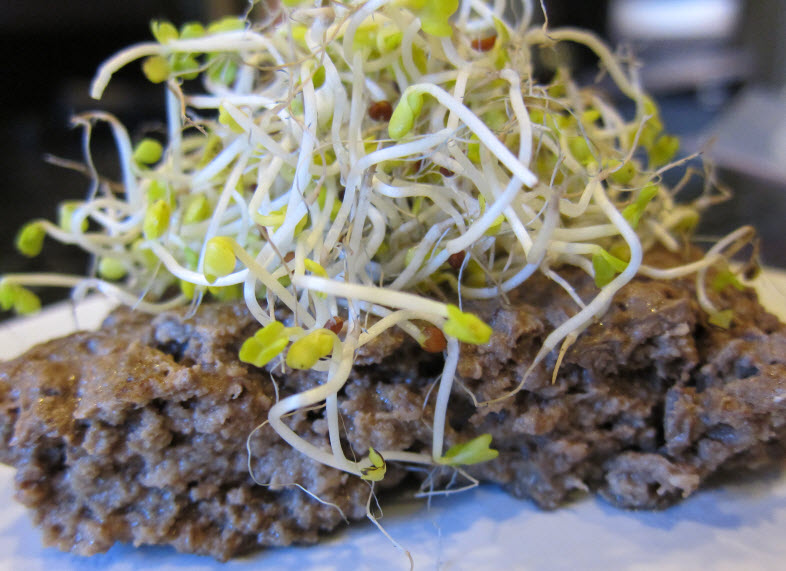 Bison burger with broccoli sprouts